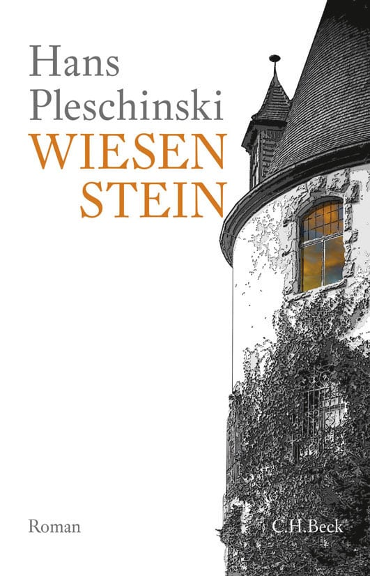 Wiesenstein Book Cover