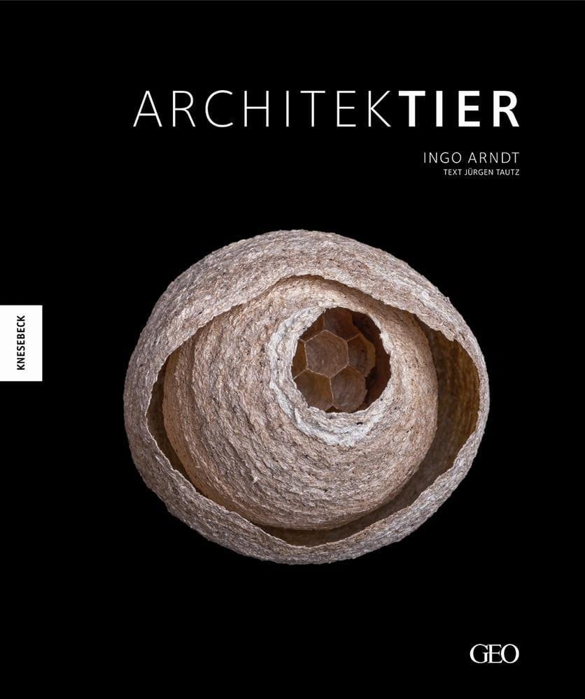 Arndt, Ingo – Architektier